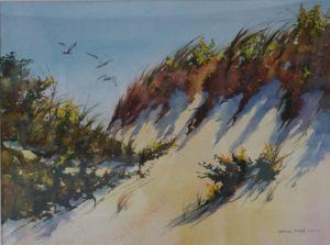 Crane Beach Dunes